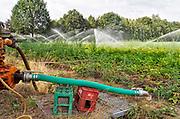 Nederland, Nijmegen, 28-7-2018Door de aanhoudende droogte hebben mens en natuur het moeilijk . Doordat regenval uitblijft worden de waterbuffers kleiner en moet het waterpeil van o.a. het IJsselmeer verhoogd worden om aan de vraag, behoefte te voldoen . Beregenen van een aardappelveld via een eigen waterput, puls, waterpuls, bron .Foto: Flip Franssen