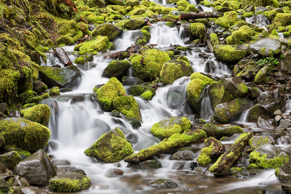 Whether you consider this a stream, waterfall or cascades, it is a beautiful scene.  A photograph cannot capture the sound of the rushing water, scent of the trees, or the cool rain that was falling as I took this photograph.
