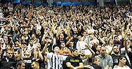 KOSARKA, BEOGRAD, 17. Nov. 2010. - Navijaci Partizana. Utakmica 5. kola Evrolige za sezonu 2010/2011 izmedju Partizana i spanske ekipe Kaha Laboral odigrane u hali Pionir. Euroleague 5. round Partizan vs Caja Laboral.  Foto: Nenad Negovanovic