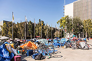 Homeless Population at Santa Ana Civic Center