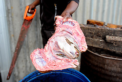 Cape Town-180906 Sinoxolo Mcetywa cutting open the Sheep head before thoroughly scrubbed and rinsed well to remove all hairs. The Sheep head also know as Smiley is very popular in the township it used to be cooked only if there was traditional cremony nowadays there are many places that clean and sell this delicacy,cooked or uncooked Sheep head cost R70 and half R35 Pictures Ayanda Ndamane/African/news/agency ANA