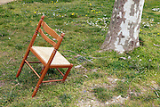 broken chair and tree trunk