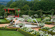Fountains, white roses and a red Japanese style pergola in the White Garden at Les Jardin du Manoir D'Eyrignqac in Salignac, Dordogne, France