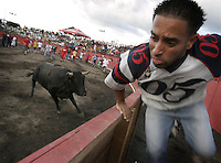 Several Costa Ricans provoke a bull to run after them as part of the traditional celebration to farewell old year on Friday December 30, 2005 in San Jose, Costa Rica. Since the middle of the 19th Century  people from all over the country  attend this kind of rodeos  by the end of the year. (Photo/Cristobal Herrera)