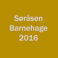 2016_Søråsen