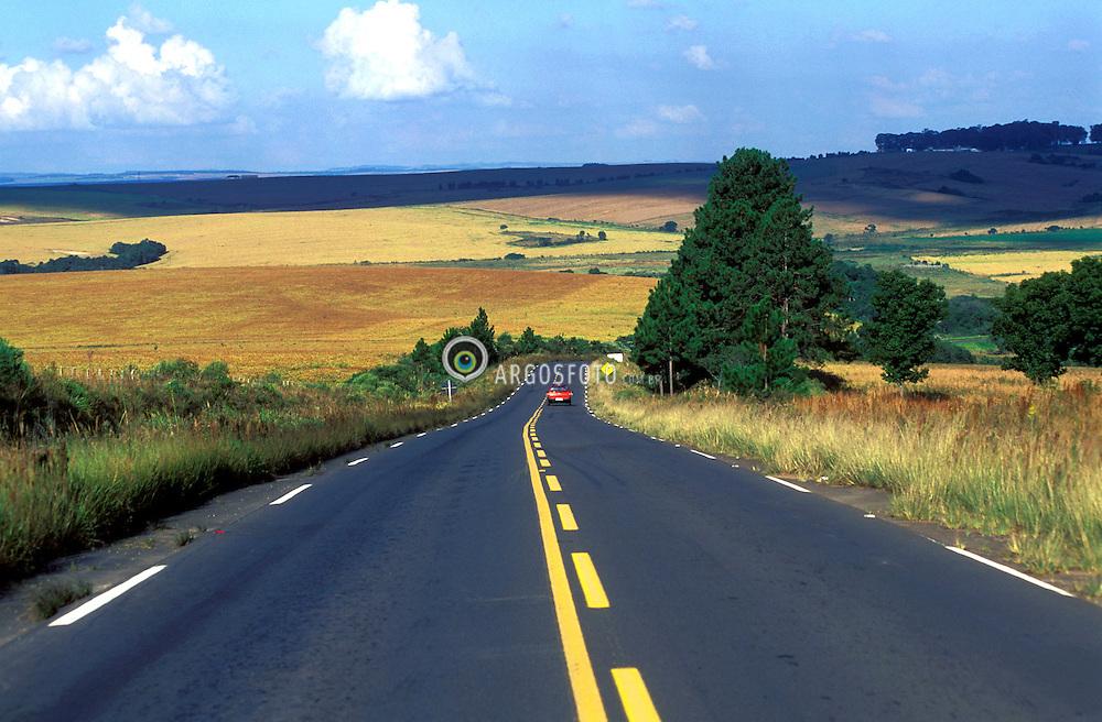 Parana, Brasil, outubro de 1990..Estrada paranaense com ceu azul./ Road with blue sky..Foto de Marcos Issa/Ag.Argosfoto