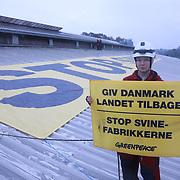 Greenpeace target pig farm in Denmark 2019