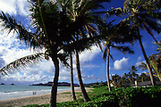 Kailua Beach, Oahu, Hawaii, USA<br />