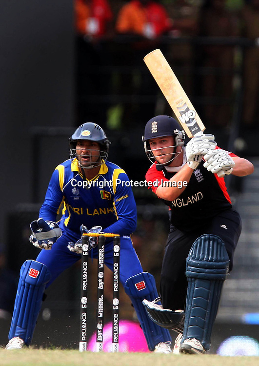 England batsman Jonathan Trott plays a shot against Sri Lanka during the ICC Cricket World Cup - 4th Quarter-Final Played at R Premadasa Stadium, Colombo
