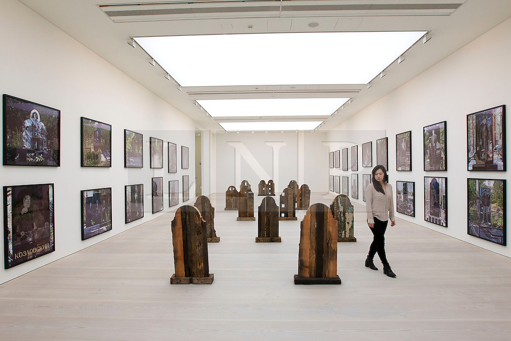 © Licensed to London News Pictures. 19/11/2013. London, UK. A Saatchi Gallery employee views 'Markers' (2011), a series of gravestones made from reclaimed timber by American artist Marianne Vitale, at the press view for 'Body Language' a new exhibition at the gallery in London today (19/11/2013). Focussing on the human form, the exhibition features the work of 19 emerging international artists and opens to the public on the 20th of November 2013. Photo credit: Matt Cetti-Roberts/LNP