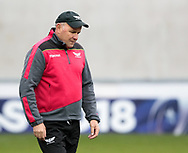Scarlets' Head Coach Wayne Pivac during the pre match warm up<br /> <br /> Photographer Simon King/Replay Images<br /> <br /> EPCR Champions Cup Round 3 - Scarlets v Benetton Rugby - Saturday 9th December 2017 - Parc y Scarlets - Llanelli<br /> <br /> World Copyright © 2017 Replay Images. All rights reserved. info@replayimages.co.uk - www.replayimages.co.uk