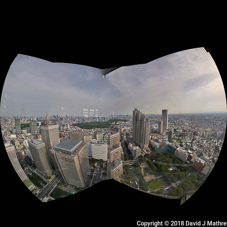 Fisheye View of the Tokyo Skyline from the 47th floor South Tower Observatory in the Metropolitan Government Building. Composite of 51 images taken with a Leica CL camera and 11-23 mm lens (ISO 200, 18 mm, f/16, 1/125 sec). Raw images processed with Capture One Pro and AutoPano Giga Pro.