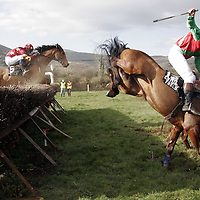 Sally Maron and M. Kelleher takes a tumble in the third at the Killaloe point to point last Saturday.<br />