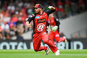 17th February 2019, Marvel Stadium, Melbourne, Australia; Australian Big Bash Cricket League Final, Melbourne Renegades versus Melbourne Stars; Aaron Finch of the Melbourne Renegades attempts a run out