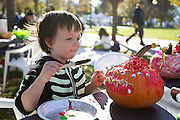 Jack Looper decides how best to decorate his pumpkin during the final Farmer's Market of the year at Pioneer Park in downtown Salt Lake City, Saturday, Oct. 27, 2012.