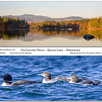 Special Edition On Golden Pond Squam Lake Bookmark featuring a fall sunset and a loon with two chicks.