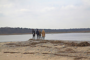 Birdwatchers at Benacre Broad, national nature reserve, Suffolk, England
