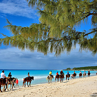 Horseback Riding on Beach Near Pegasus Ranch on Half Moon Cay, Bahamas<br /> Your horseback excursion at Half Moon Cay starts with a safety lesson and donning helmets.  Then a few practice paces within a pen before the procession heads onto a trail.  Once you have the riding confidence of Dale Evans and Roy Rogers, your group emerges onto the beach. The pace is hardly like a steeplechase but the adventure sure is fun.