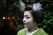 Fukukimi,'maiko' (geisha apprentice) from Ishihatsu okiya (house of geishas).Geisha's distric of Miyagawacho.Kyoto. Kansai, Japan.