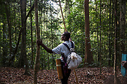 Tik stands at the top of a forested hill scanning the forest for signs of animal life. During this particular three day hunting trip they caught no animals.<br /> <br /> Evidence suggests that the Maniq, a Negrito tribe of hunters and gatherers, have inhabited the Malay Peninsula for around 25,000 years. Today a population of approximately 350 maniq remain, marooned on a forest covered mountain range in Southern Thailand. Whilst some have left their traditional life forming small villages, the majority still live the way they have for millennia, moving around the forest following food sources. <br /> <br /> Quiet and reclusive they are little known even in Thailand itself but due to rapid deforestation they are finding it harder to survive on the forest alone and are slowly being forced to move to its peripheries closer to Thai communities.