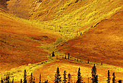 Detail of Tombstone Range in early fall on the Dempster Highway<br />