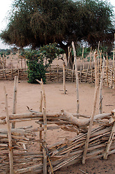 Niger, Agadez, Tidene, 2007. Handmade stockades keep goats and donkeys close by at night. The survival of every animal is crucial to the nomads.