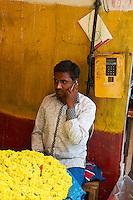 Inde, etat du Karnataka, Mysore, marche de Devaraja, fleur // India, Karnataka, Mysore, Devaraja market, flower