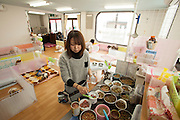 Saito  Yuki prepares food and medication for the dog at the  Asawa Pet Pasture elder care for Dogs, Pet of Owners who can not give the  care they feel  their pet deserves.<br /> Saito  Yuki  (grey sweater )   and her co worker Kana Okazaki  are providing the  extra care need to  elderly dogs or dogs with special needs.<br /> for story by Richard Lloyd Parry