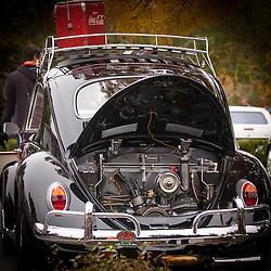 PNW Springmeet - Volkswagens Fall 2013