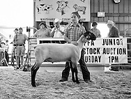 The Waushara County Fair being held in Wautoma, Wisconsin  Saturday, Aug. 15, 2015.