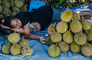 Durian for Sale (Durio sp.)<br /> Vegetable Market<br /> Biak Island<br /> West Papua<br /> Indonesia