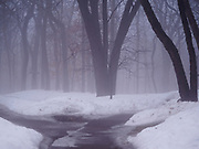 14 MARCH 2019 - MINNETONKA, MINNESOTA, USA:  A foggy winter morning in Minnetonka. PHOTO BY JACK KURTZ