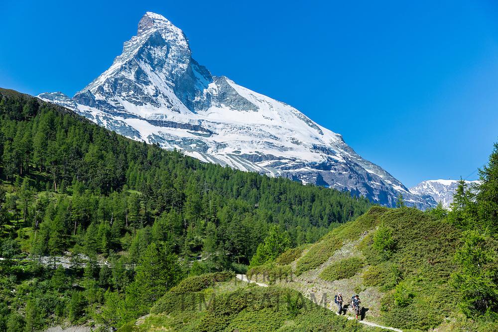 Hikers on walking trail below the Matterhorn mountain in the Swiss Alps near Zermatt, Switzerland