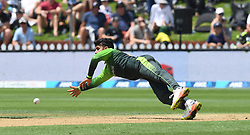 Pakistan's Shadab Khan dives to field off his own bowling against New Zealand in the fifth one day International Cricket match, Basin Reserve, Wellington, New Zealand, Friday, January 19, 2018