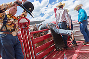A rodeo clown adjusts his hat as a bronco rider get's ready to ride during the Cheyenne Frontier Days rodeo July 25, 2015 in Cheyenne, Wyoming. Frontier Days celebrates the cowboy traditions of the west with a rodeo, parade and fair.