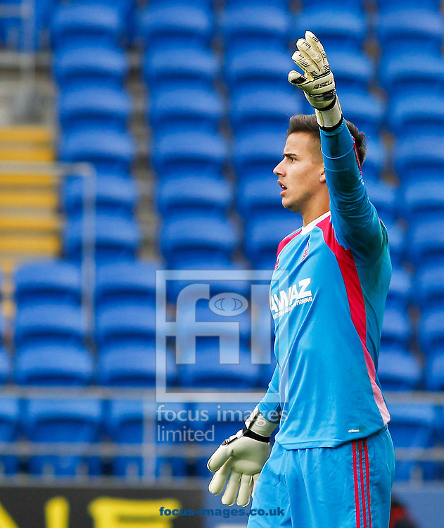 Karl Darlow of Nottingham Forest during the Sky Bet Championship match at the Cardiff City Stadium, Cardiff<br /> Picture by Mike  Griffiths/Focus Images Ltd +44 7766 223933<br /> 18/10/2014