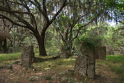 Cannon's Point Plantation Ruins & maritime forest<br /> St Simon's Island, Barrier Islands, Georgia<br /> USA