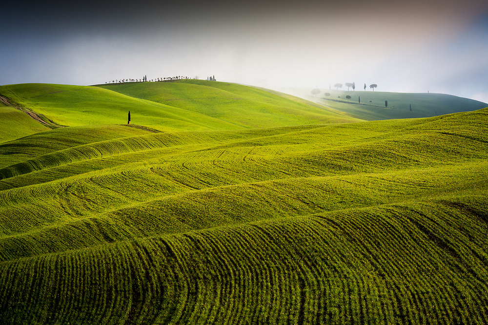 Green valley near San Quirico d'orcia. Tuscany, Italy