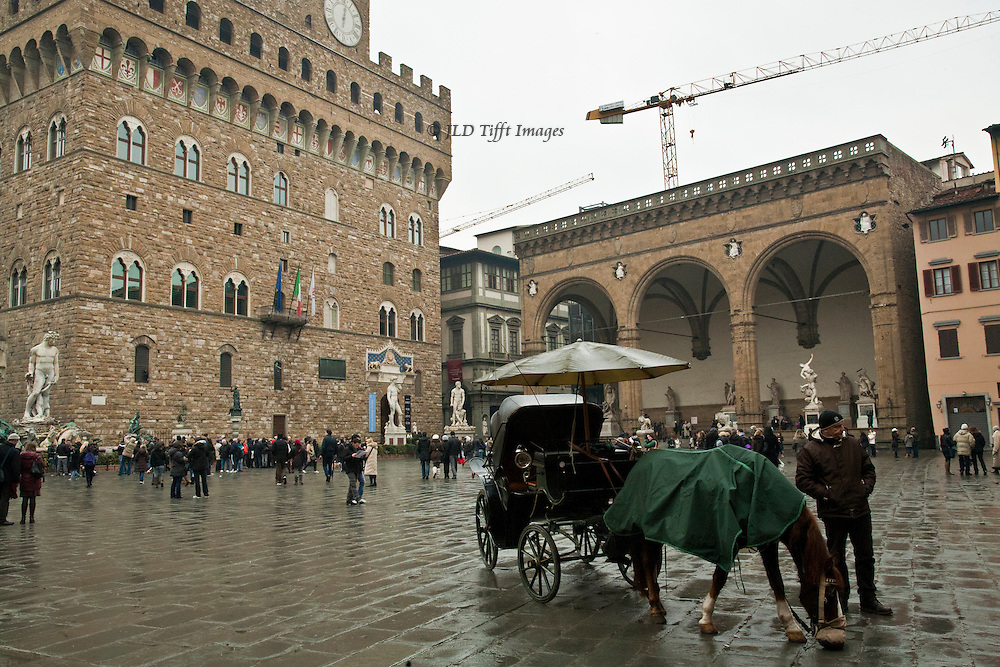 It rained in January.  Horse eating lunch out of his nosebag on a rainy day; he wears a raincoat, his carriage has an umbrella, and his master stands beside him hoping for customers.  Glistening rain slicked pavement. Crowds in the background in front of the Palazzo Vecchio.  Construction cranes in the sky.  We'll notice them again too later.