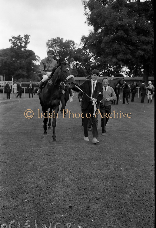 "15/07/1967<br /> 07/15/1967<br /> 15 July 1967<br /> Hennessy Handicap at Leopardstown Races, Leopardstown Racecourse, Co. Dublin.  Robert Gloverson of owners Mr and Mrs J.A.N. Glover of Moneymore, Co. Derry leading in ""My Kuda"", winner of Hennessy Handicap 1967 at Lepardstown. Jockey is T.P. Burns."