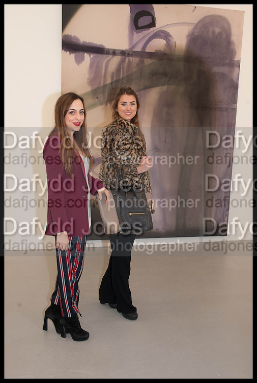 MARIA VICTORIA RAIOLA; BEATRICE SALSANO, Frank Cohen and Nicolai Frahm host Julian Schnabel's 'Every Angel has a Dark Side,' private view and party. IN AID OF CHICKENSHED. Dairy Art Centre, 7a Wakefield Street, London. 24 APRIL 2014