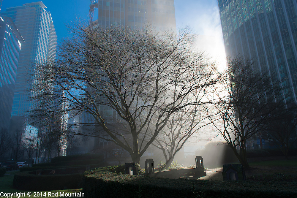 The rays of the morning sun shines between the buildings and through fog to illuminate a green space within the city centre of Vancouver, British Columbia