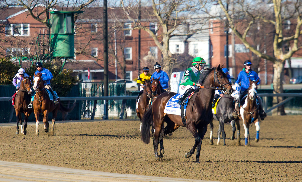 """(3) This is a Series of 11 photos, beginning with the post parade culminating with the stretch drive for the 2015 Wood Memorial. The race was won by """"Frosted"""", number 4, a grey horse with jockey Joel Rosario aboard in blue silks."""