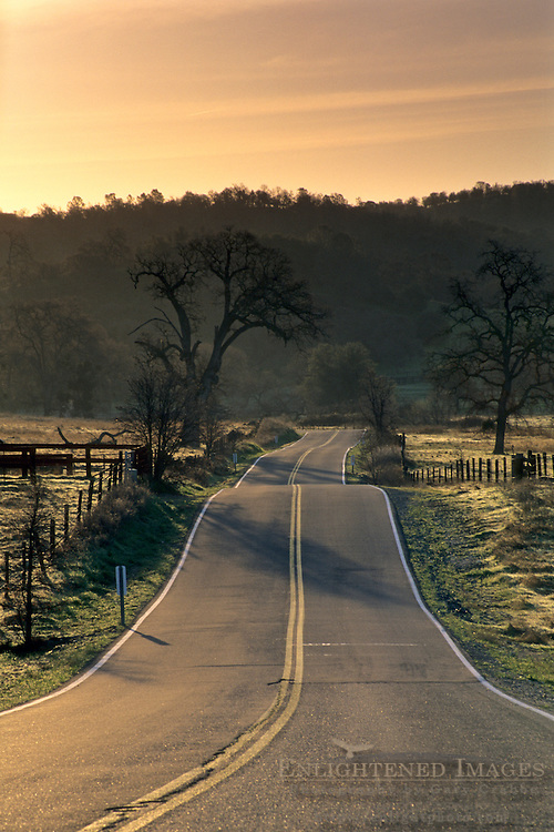 Sunrise light over rural county road in the foothills near Plymouth, Amador County, California