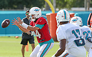 Miami Dolphins quarterback Ryan Fitzpatrick (14) takes a snap during Minicamp at the Baptist Health Training Facility at Nova Southeastern University, Tuesday, August 6, 2019, in Davie, Fla. (Kim Hukari/Image of Sport)