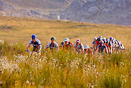 Oak Valley ( Elgin / Grabouw ), SOUTH AFRICA - Riders make their way through the Wolwekloof Valley during stage six , 6 , of the Absa Cape Epic Mountain Bike Stage Race in Oak Valley ( Elgin / Grabouw ) on the 27 March 2009 in the Western Cape, South Africa..Photo by Karin Schermbrucker /SPORTZPICS