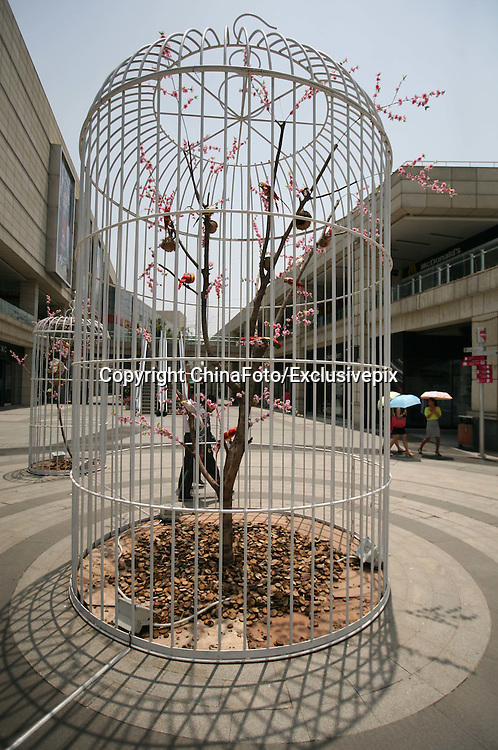 NANJING, CHINA - MAY 22: (CHINA OUT) <br /> <br /> Giant Bird Cages In Nanjing<br /> <br /> Six giant bird cages are seen at Golden Eagle Outlets plaza on May 22, 2013 in Nanjing, Jiangsu Province of China. The biggest cage is 6 meters tall, and the smallest is 3. There are some fake trees, fake flowers and fake birds in these cages. They are placed to promote environmental protection. <br /> ©ChinaFoto/Exclusivepix
