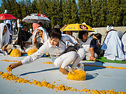 """02 JANUARY 2016 - KHLONG LUANG, PATHUM THANI, THAILAND: A woman places marigolds of along the path monks will walk at Wat Phra Dhammakaya on the first day of the 5th annual Dhammachai Dhutanaga (a dhutanga is a """"wandering"""" and translated as pilgrimage). More than 1,300 monks are participating pilgrimage through central Thailand. The purpose of the pilgrimage is to pay homage to the Buddha, preserve Buddhist culture, welcome the new year, and """"develop virtuous Buddhist youth leaders."""" Wat Phra Dhammakaya is the largest Buddhist temple in Thailand and the center of the Dhammakaya movement, a Buddhist sect founded in the 1970s. The monks are using busses on some parts of the pilgrimage this year after complaints about traffic jams caused by the monks walking along main highways.        PHOTO BY JACK KURTZ"""