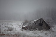 Barn in Snow & Fog, Alberta, Canada