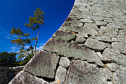 Detail of old stone walls of Matsuyama Castle in Shikoku Japan